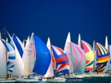 Regatta, Lake Constance, Germany