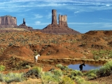 Wild Horses at the Watering Hole, Monument Valley